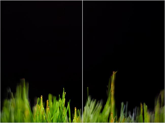"""Urban Green I"" Diptych 2x 72"" x 48"""