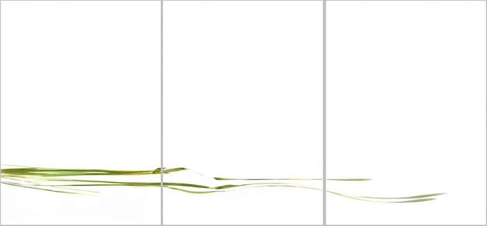 """Urban Green III"" Triptych"